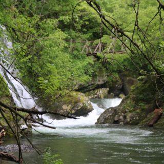 Екопътека Бяла река хижа Рай